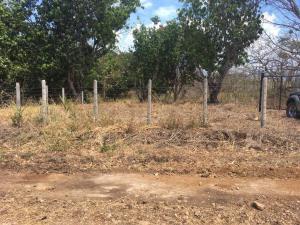 Terreno En Alquileren Tarcoles, Garabito, Costa Rica, CR RAH: 21-1870