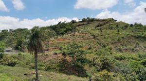 Terreno En Ventaen Orotina, Orotina, Costa Rica, CR RAH: 21-1996