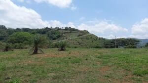 Terreno En Ventaen Orotina, Orotina, Costa Rica, CR RAH: 21-1982