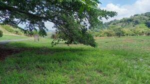 Terreno En Ventaen Orotina, Orotina, Costa Rica, CR RAH: 21-1991