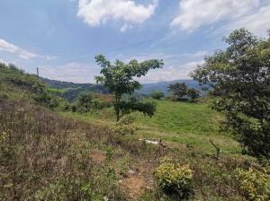 Terreno En Ventaen Orotina, Orotina, Costa Rica, CR RAH: 21-1998
