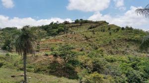 Terreno En Ventaen Orotina, Orotina, Costa Rica, CR RAH: 21-2045
