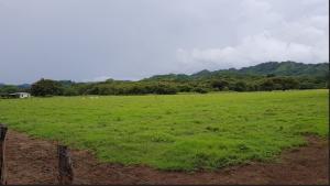 Terreno En Ventaen Sardinal, Carrillo, Costa Rica, CR RAH: 21-2054