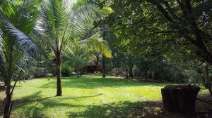 Terreno En Ventaen San Pablo, Turrubares, Costa Rica, CR RAH: 21-2055