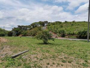 Terreno En Ventaen Orotina, Orotina, Costa Rica, CR RAH: 21-2076