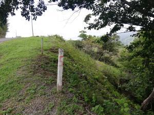 Terreno En Ventaen Hacienda Vieja, Orotina, Costa Rica, CR RAH: 21-2379