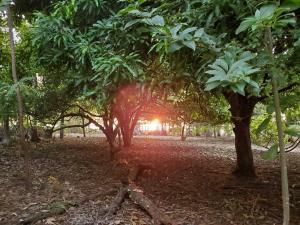 Terreno En Ventaen Liberia, Nandayure, Costa Rica, CR RAH: 21-2117