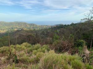 Terreno En Ventaen Carrillo, Hojancha, Costa Rica, CR RAH: 21-2127
