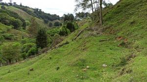 Terreno En Ventaen Tobosi, El Guarco, Costa Rica, CR RAH: 21-2151