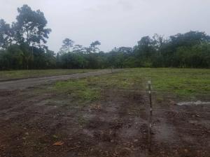 Terreno En Ventaen Guapiles, Pococi, Costa Rica, CR RAH: 21-2154