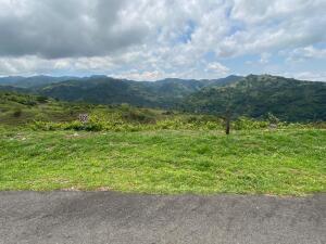 Terreno En Ventaen Orotina, Orotina, Costa Rica, CR RAH: 21-2157
