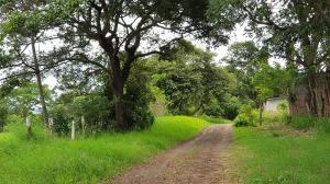 Terreno En Ventaen El Coyol, Alajuela, Costa Rica, CR RAH: 21-2174