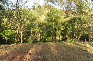 Terreno En Ventaen Puerto Soley, Hojancha, Costa Rica, CR RAH: 21-2202