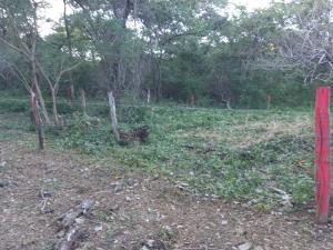 Terreno En Ventaen San Antonio, Nicoya, Costa Rica, CR RAH: 21-2217