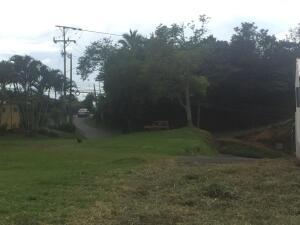 Terreno En Ventaen San Juan, Poas, Costa Rica, CR RAH: 21-2324