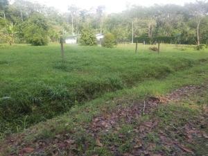 Terreno En Ventaen Puerto Viejo, Talamanca, Costa Rica, CR RAH: 21-2330