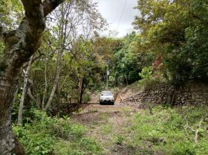 Terreno En Ventaen Hacienda Vieja, Orotina, Costa Rica, CR RAH: 21-2382