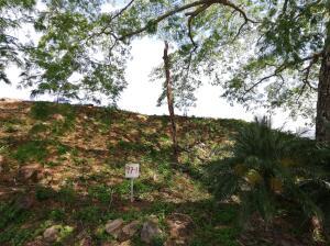 Terreno En Ventaen Hacienda Vieja, Orotina, Costa Rica, CR RAH: 21-2384