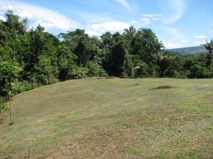 Terreno En Ventaen Sarapiqui, Alajuela, Costa Rica, CR RAH: 21-2417
