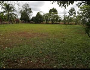 Terreno En Ventaen Muelle San Carlos, San Carlos, Costa Rica, CR RAH: 21-2458
