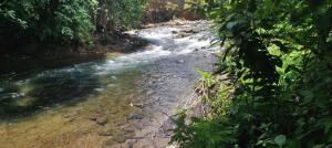 Terreno En Ventaen Jimenez, Pococi, Costa Rica, CR RAH: 21-2460