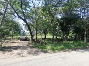 Terreno En Ventaen Nosara, Nicoya, Costa Rica, CR RAH: 21-2535