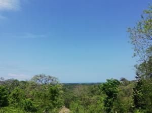 Terreno En Ventaen Nosara, Nicoya, Costa Rica, CR RAH: 21-2541