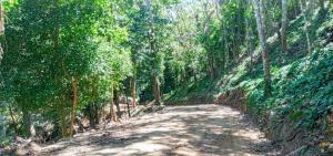Terreno En Ventaen Tambor, Paquera, Costa Rica, CR RAH: 21-2540