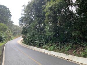 Terreno En Ventaen El Jardin, Dota, Costa Rica, CR RAH: 21-2544
