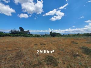 Terreno En Ventaen Sabana De Poas, Poas, Costa Rica, CR RAH: 21-2565