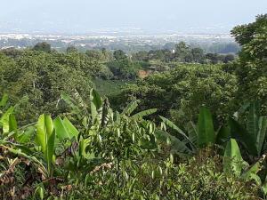 Terreno En Ventaen Sabana De Poas, Poas, Costa Rica, CR RAH: 21-2570