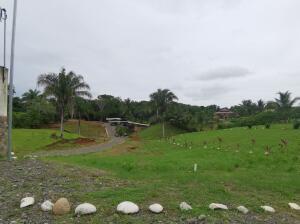 Terreno En Ventaen Quepos, Parrita, Costa Rica, CR RAH: 22-7