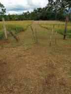 Terreno En Ventaen La Fortuna, San Carlos, Costa Rica, CR RAH: 22-9