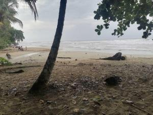 Terreno En Ventaen Puerto Viejo, Talamanca, Costa Rica, CR RAH: 22-95