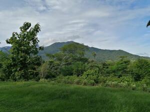 Terreno En Ventaen San Pedro, Turrubares, Costa Rica, CR RAH: 22-132