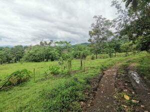 Terreno En Ventaen San Ramon, San Ramon, Costa Rica, CR RAH: 22-167