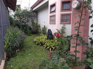 Casa En Ventaen Pozos, Santa Ana, Costa Rica, CR RAH: 22-207