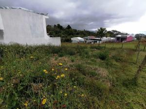 Terreno En Ventaen Vc San Isidro, Vazquez De Coronado, Costa Rica, CR RAH: 22-258