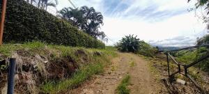 Terreno En Ventaen Grecia, Grecia, Costa Rica, CR RAH: 22-261