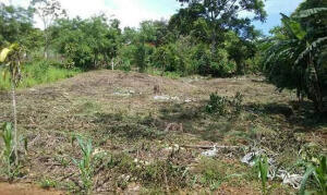 Terreno En Alquileren Cirri, Perez Zeledon, Costa Rica, CR RAH: 22-280