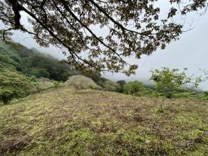 Terreno En Ventaen Salitral, Santa Ana, Costa Rica, CR RAH: 22-302