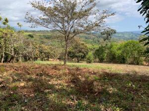 Terreno En Ventaen San Isidro De El General, Perez Zeledon, Costa Rica, CR RAH: 22-318