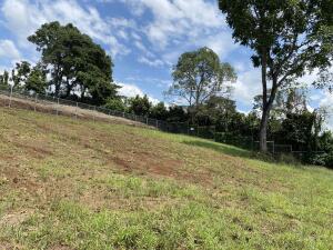 Terreno En Ventaen Naranjo, Naranjo, Costa Rica, CR RAH: 22-357