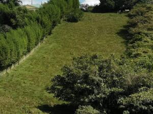 Terreno En Ventaen Vc San Isidro, Vazquez De Coronado, Costa Rica, CR RAH: 22-398