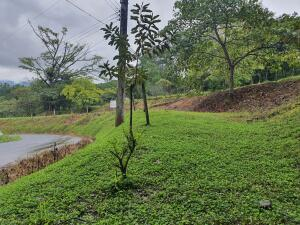 Terreno En Ventaen Turrucares, Turrubares, Costa Rica, CR RAH: 22-439