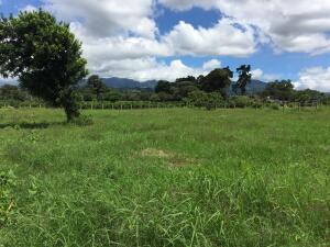 Terreno En Ventaen San Vicente, Santo Domingo, Costa Rica, CR RAH: 22-523