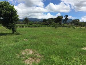 Terreno En Ventaen San Vicente, Santo Domingo, Costa Rica, CR RAH: 22-529