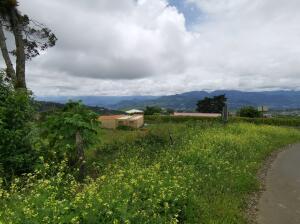 Terreno En Ventaen Pacayas, Alvarado, Costa Rica, CR RAH: 22-538