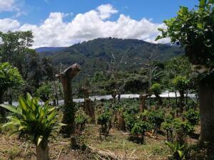Terreno En Ventaen Corralillo, Cartago, Costa Rica, CR RAH: 22-581