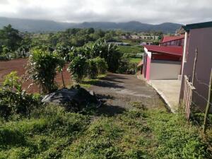 Terreno En Ventaen Santiago, San Ramon, Costa Rica, CR RAH: 22-636